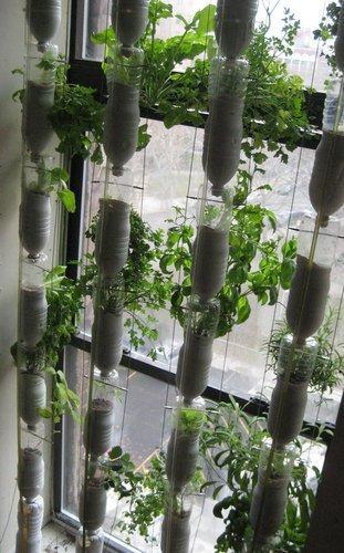 Gradina urbana: 10 idei pentru amenajarea unui colt cu flori intr-un apartament - Poza 2