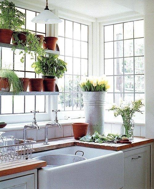 Gradina urbana: 10 idei pentru amenajarea unui colt cu flori intr-un apartament - Poza 10