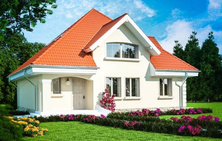 Proiect de casa perspectiva
