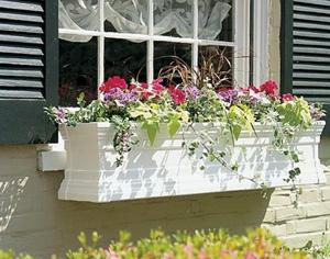 Geamuri termopan: ferestre pentru o viata - Poza 1