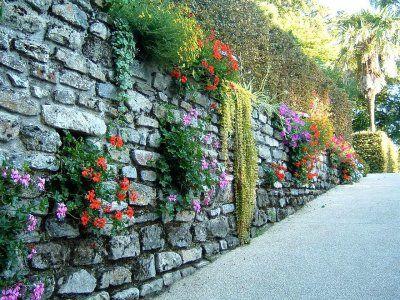 Gard viu, din fier forjat, caramida, piatra sau lemn; ce i-ar sta bine casei tale? - Poza 3