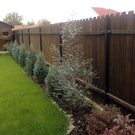 Gard viu, din fier forjat, caramida, piatra sau lemn; ce i-ar sta bine casei tale? - Poza 5