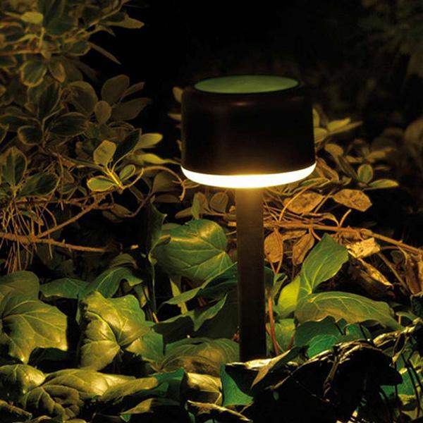 Nopti de poveste intr-o gradina plina de lumina - Poza 1
