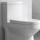 Rezervoare pentru WC