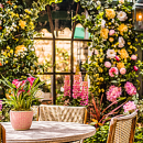 Decorațiuni pentru terasă şi grădină