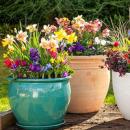 Ghivece pentru flori